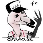 Shalvata Tel Aviv