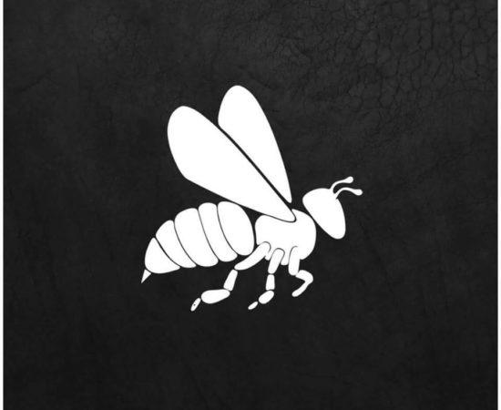 Tuesday's BEE